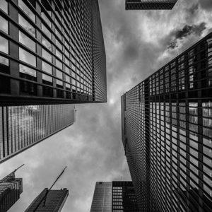 上場企業と非上場企業の違いとは?業績で見るポイントサイト運営会社の安全性を徹底比較